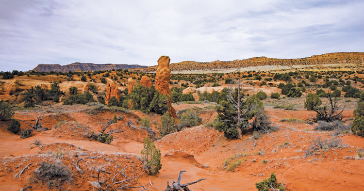 Sandstone formations at Devils Garden, part of the Grand Staircase-Escalante National Monument in south-central Utah (Wikimedia Commons)